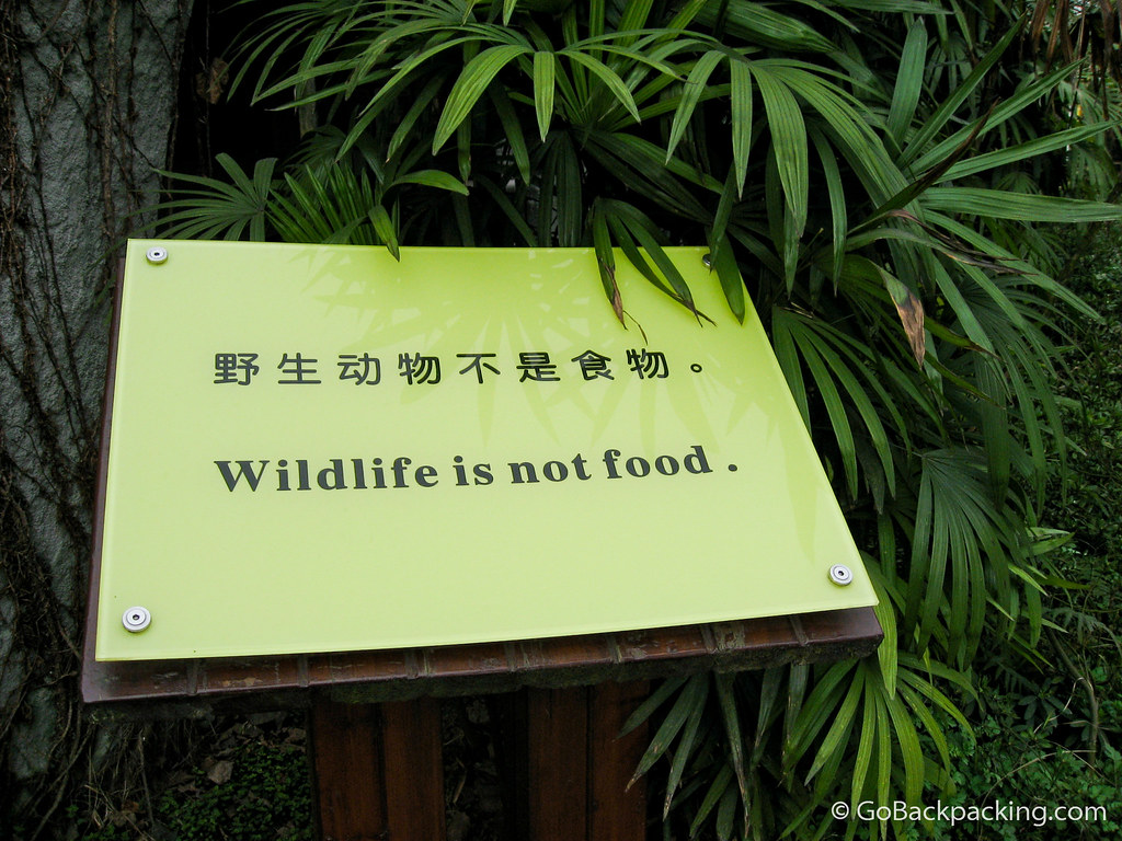 Funny sign in China