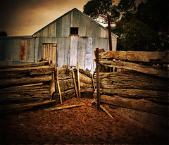 The Shearing Shed (phOto phObic) Tags: old yards summer color wool barn fence photography photo wooden day sheep photos farm shed dry australia victoria drought shearing wimmera
