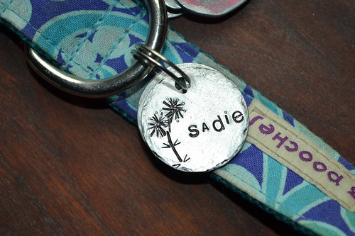 Sadies new tag1
