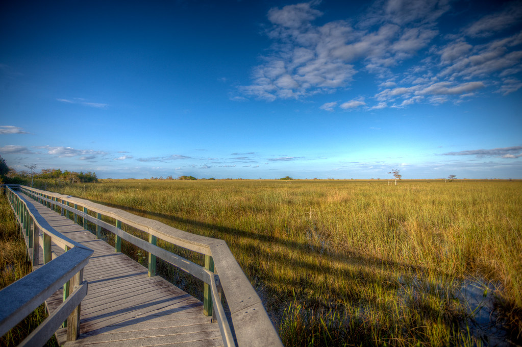 20101126-EvergladesHDR-8364