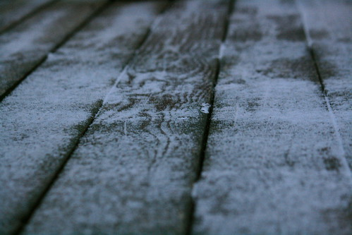 262/365 First Snow