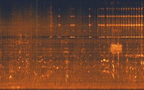 urban spectrogram, Mancur Air Menteng, Jakarta, Sunday morning.