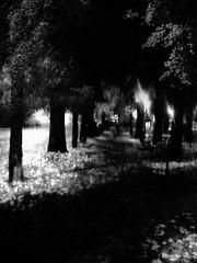 ...tutti i respiri della notte...... All the breaths of the night ... (UBU ) Tags: blancoynegro blackwhite noiretblanc blues dreams biancoenero blunotte ubu unamusicaintesta landscapeinblues bluubu luciombreepiccolicristalli