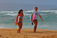 Nice ! (fotos by greg) Tags: sunset beach hawaii nikon surf contest north shore d300 fotosbygreg