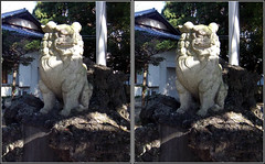 DSCF4267 諏訪神社 狛犬 (crosseye 3D) - by yoshing_BT