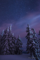 Brisk Starry Night (Ben Canales) Tags: oregon stars star ben mthood starry canales thestartrailcom