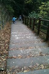 粟又の滝 自然遊歩道