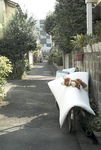 東京都品川区戸越