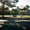 on the brench in Nara (kymak) Tags: park green 6x6 grass sunshine japan youth rolleiflex mediumformat square daylight couple sunbath deer 日本 nara automat 奈良 奈良公园 schneiderxenar3575 modelk4a june1951march1954