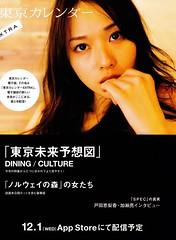201101 Tokyo Calendar P223