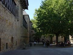 Cour du Midi (Luciano Guelfi) Tags: france frança carcassonne chateaucomtal sonydscw100 langdoc courdumidi
