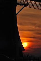 Winter Wonderland (OurPhotoWork) Tags: travel winter sunset holland bird netherlands windmill birds zonsondergang nikon nederland explore nl wintertime wonderland winterwonderland ijs windmolen zwaan alphenaandenrijn zwanen ourphotowork