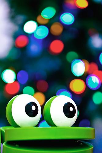 Froggy Bokeh