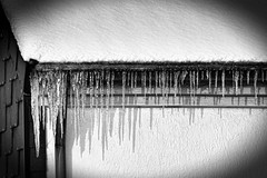 Icicled (Photofreaks [Thank you for 2.000.000 views]) Tags: winter snow germany geotagged icicles 2010 icicled photofreaks geo:lat=51393357 geo:lon=6968551 wwwphotofreakseu adengs