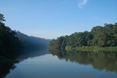 - Kandy, The Mahaweli Ganga - (dcem) Tags: srilanka kandy serendib ceylan 400d canonefs1855mm3556 mahaweliganga