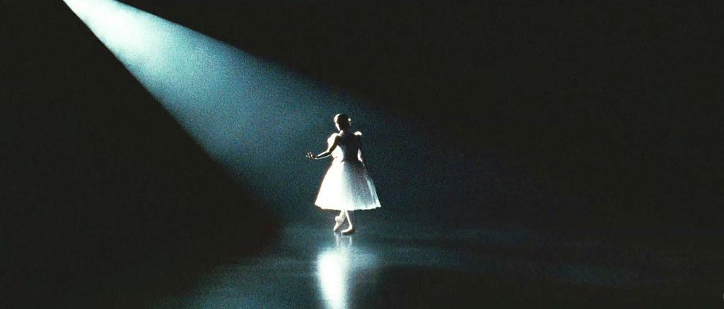 Black Swan 13