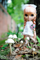 BLYTHE DOLL EBL-12 Fruit Punch () (snow638739) Tags: fruit doll sigma  blythe punch f28 ebl 1850mm hsm d40x  snow638739  2 snow0316