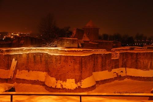 cetatea de scaun, Suceava