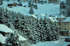 snow DSC_0261 (alias Tomnorton) Tags: valgardena kristiania tomnorton stufferthomas