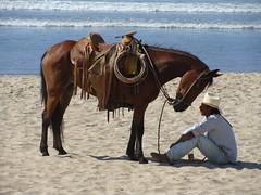 A man and His Horse (knightbefore_99) Tags: ocean horse beach mexico caballo sand cowboy pacific mexican mazatlan hombre sinaloa mygearandmepremium mygearandmebronze mygearandmesilver