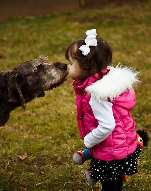 001/365 - January 1, 2011 - Puppy Love
