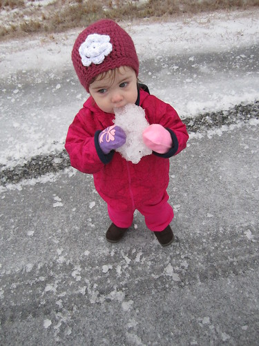 snowday11 019