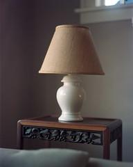 01-12-2011_LampLR1 (Alastair Bird) Tags: portrait canada film vancouver large 4x5 linhof format 160vc xenotar 150mmf28