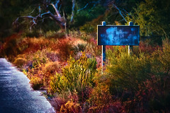 Well, that certainly clears things up. (Doug Knisely) Tags: road sunset abandoned sign nikon desert sandiego derelict clevelandnationalforest d700 28300vr trailabovei8westof79