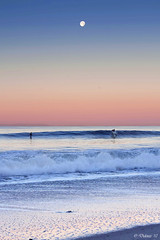 Moonlight Surfer (Didenze) Tags: pink blue moon texture sunrise sand pastel surfer wave explore gradient moonlight bluehour sanclemente canon450d didenze