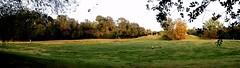 DSCF6851 Parco Nord - Una nuova pista  stata tracciata - La savana rinasce con i re magi! (Franz Maniago) Tags: sentiero pista savana nuovapista