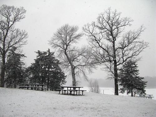 Wirth park