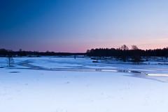 Kaanetatud jga (GaidaFoto) Tags: lumi talv j htu soomaa maastik klm