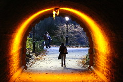 Passage - Central Park 8 (Nick Mulcock) Tags: park new york city nyc bridge light lake newyork fall water lamp leaves canon photo moss squirrel arch post walk centralpark central dramatic tunnel walkway 200 portal archway leafs 70 70200 centralparktunnel 60d flickraward flickraward5 flickrawardgallery
