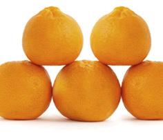 5 tangerines