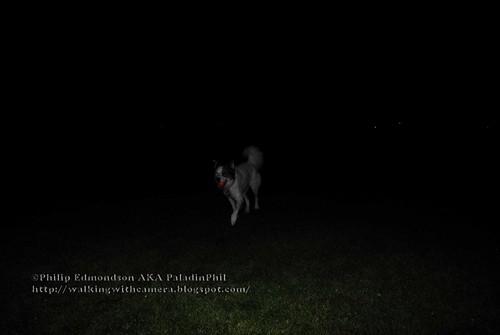 Nietzsche at Night