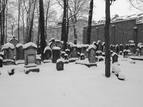 Jüdischer Friedhof/ 2