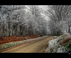 Frosty morning ........... (alfvet) Tags: ice nikon campagna inverno ohhh gmt vigevano ghiaccio d60 galaverna flickraward platinumheartaward veterinarifotografi superstarthebest bestcapturesaoi magicunicornverybest magicunicornmasterpiece sailsevenseas elitegalleryaoi flickraward5 mygearandmepremium mygearandmebronze mygearandmesilver mygearandmegold mygearandmeplatinum mygearandmediamond flickrawardgallery ringexcellence dblringexcellence tplringexcellence artistoftheyearlevel4 aboveandbeyondlevel4 aboveandbeyondlevel1 flickrstruereflection1 flickrstruereflection2 flickrstruereflection3 flickrstruereflection4 flickrstruereflection5 flickrstruereflection6 flickrstruereflection7 artistoftheyearlevel5 eltringexcellence artistoftheyearlevel7 artistoftheyearlevel6 aboveandbeyondlevel2 aboveandbeyondlevel3 rememberthatmomentlevel1 rememberthatmomentlevel2 rememberthatmomentlevel3