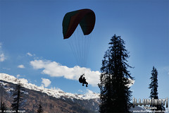 Paragliding @ Himalayas (I.AM.ABHISHEK.SINGH) Tags: winter india snow mountains cold sports asian cool indian paragliding extremesports glider himalayas himalayan parachute mountainrange abhisheksingh adventuresports