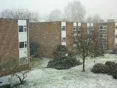 from window (Julie70 Joyoflife) Tags: winter snow london photo unitedkingdom hiver lewisham londres angleterre snowing neige 2010 julie70 copyrightjkertesz havazik ninge photojuliekertesz ilneige photojulie70