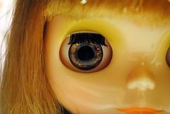 Close-up of Iris' new eye chips