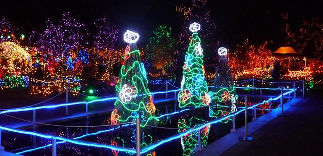 Tron-ish Christmas lighting @ Van Dusen Botanical Garden