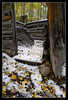 Fisherman's Cabin (jeandayphotography.com) Tags: california ca trees snow building fall colors leaves rural forest october decay canyon aspen sierranevada bishop 2010 mhw jday easternsierranevada bishopcreekcanyon jeanday aspendell mountainhighworkshops
