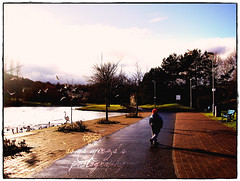 `Walking past 2010 (m) Tags: birds bench scotland pond december ducks newyear winters 1111 2010 2011 bythelake snowylake thatsmynephew silentpath lazycrazywalk walkingthroughthepathway ilovedthispath