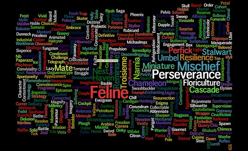 365 Groovy words for 2010