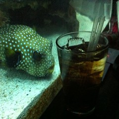 No Homer! Leave my drink alone!