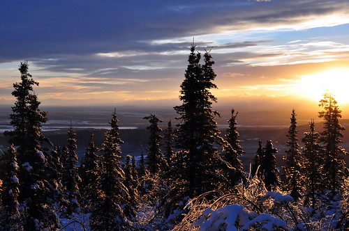 Tanana Valley from Ester Dome