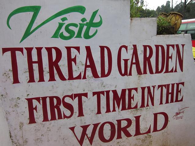 Ooty's infamous Thread Garden