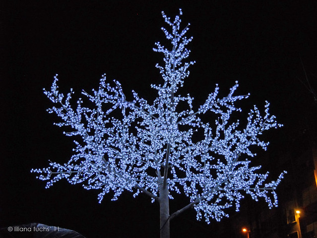Murcia - Christmas lights