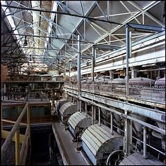 sugar factory (silke s.) Tags: dusty abandoned 120 6x6 film analog mediumformat decay serbia negativescan sugarfactory guarded hasselblad500cm colornegative autaut kodakektar100