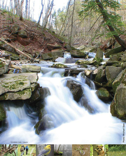 Bruce Trail Conservancy - Grindstone Creek